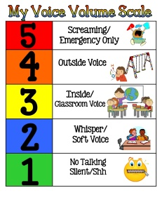 5 Point Voice Scale